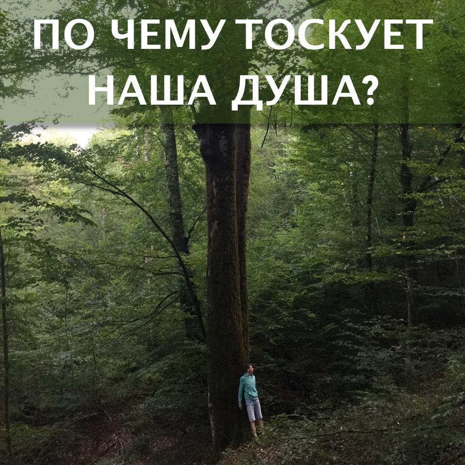 toska-dushi1